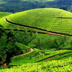 Best-Time-to-Visit-Kerala