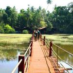 Spice plantation tour in Goa India